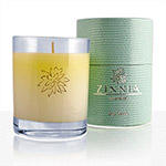 Zinnia Cucumber Melon Soy Candle
